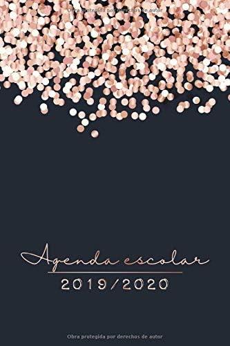 2019 2020 Agenda Escolar: El Calendario Semestral y Planificador ...