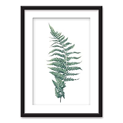 Charming Visual, Made With Top Quality, Framed Tropical Plant Leaf Black Picture Frames White Matting