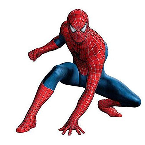 DSFGHE Spiderman Costume Cosplay Variation Black 3D Tights Battle Spiderman Set Fancy Dress Party Holiday Party Dress,Red-L