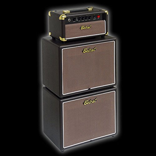 Belcat G110/Cabinet Guitar Speaker Cabinet Pairs with Belcat Tube-H5/Head with 10-Inch Celestion Speaker
