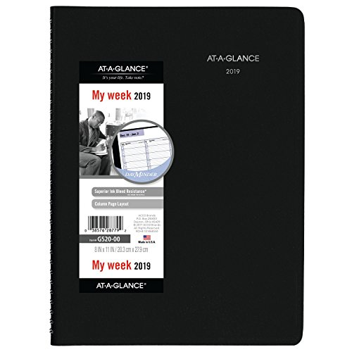AT-A-GLANCE G52000-18 DayMinder Weekly Appointment Book/Planner, January 2019 - December 2019, 8