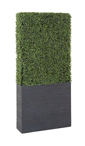 Deco 79 50861 Pe Boxwood Hedge, 22'' by 59'' by Deco 79 (Image #4)
