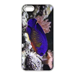 Blue Fish Hight Quality Plastic Case for Iphone 5s by lolosakes