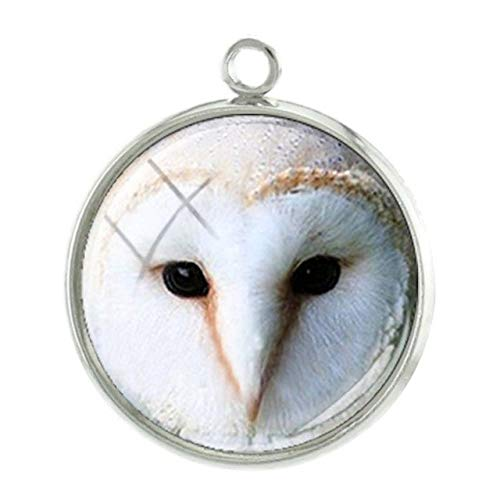 Pendants -1Pc Birds Seris Pictures Pendants Charms Personalized Photos Handmade 20mm Glass cabochon Dome Classic Jewelry -10