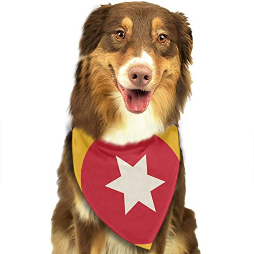 Tulsa Flag Dog Scarf Puppy Bandana Collar Dog Towels Pet Supplies for Cat ()