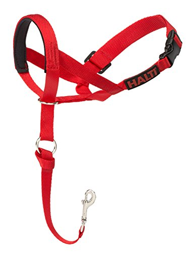 The Company of Animals Halti Headcollar, Red, Size 3