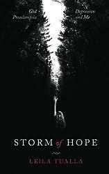 Storm of Hope: God, Preeclampsia, Depression, and me