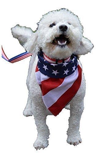 - Arrowhead Designs American Pride Dog Bundle Collar, Leash, and Bandana