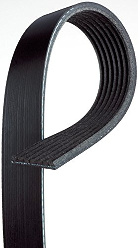 ACDelco 7K443 Professional V-Ribbed Serpentine Belt