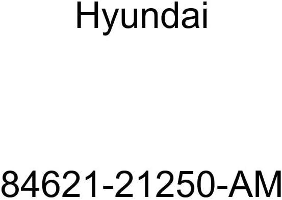 Genuine Hyundai 84621-21250-AM Main Console