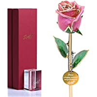 Icreer 24K Gold-Dipped Eternity Rose with Crystal Stand (Light Pink)
