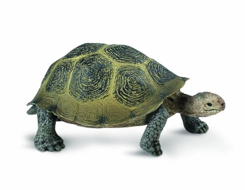 Safari Ltd Wild Safari North American Wildlife   Desert Tortoise   Realistic Hand Painted Toy Figurine Model   Quality Construction From Safe And Bpa Free Materials   For Ages 3 And Up