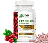 Cranberry Concentrate Pills (650 mg) - Cranberry Pills Support Urinary Tract, Blood Sugar Levels and Heart Health - All Natural Cranberry Supplement - 60 Capsules - by Jiva Botanicals