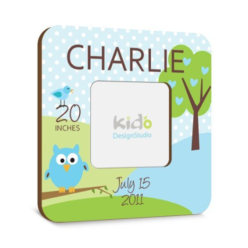 Personalized Picture Frame for Children with Owl, Nursery Keepsake for Boys, Boys Bedroom Wall Decor, Custom Photo Frame Wall Art