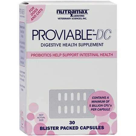 Amazon.com: Nutramax, Suplemento suministrador de salud para ...