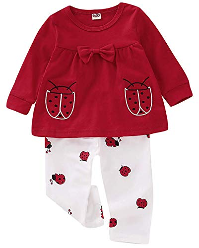 Baby Girls Clothes Set 2 Piece Long Sleeve Ladybug for sale  Delivered anywhere in USA