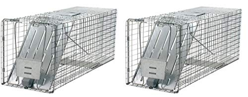 Havahart 1079 Large 1-Door Humane Animal Trap for Raccoons, Cats, Groundhogs, Opossums (Pack of 2) ()