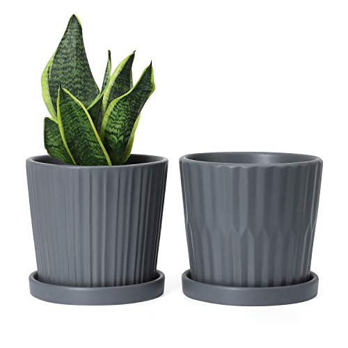 Medium Plant Pots – 6 Inch Grey Cylinder Ceramic Planters with Attached Saucers, Two Line Grain, House and Office Decor…