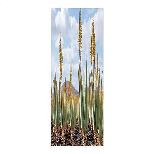 rivacy Window Film No Glue,Plant,Photo from Aloe Vera Plantation Medicinal Leaves Remedy Fuerteventura Canary Islands Decorative,Multicolor,for Home&Office ()