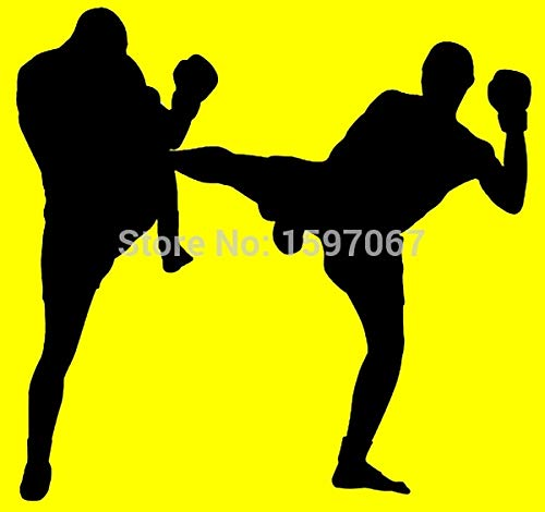 - Tamiko Kick Boxing Martial Arts Graphic Sticker For Car Window Truck Door Laptop Kayak Etc Vinyl Decal - (Color Name: As a picture )