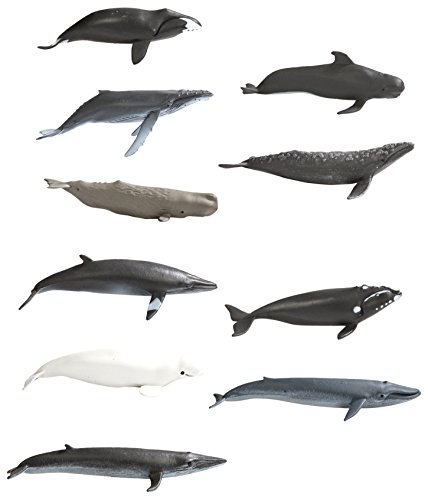 Safari Ltd. TOOB - Whales - Realistic Hand Painted Toy Figurine Models - Quality Construction from Phthalate, Lead and BPA Free Materials - for Ages 3 and Up