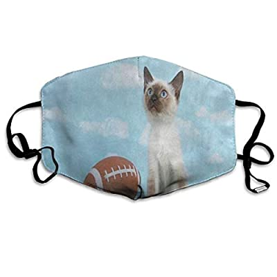 Hipster Cat Kitten Green Grass Football Designer Dust Mouth Mask Reusable Anti-Dust Face Mask Adjustable Earloop Skin Protection