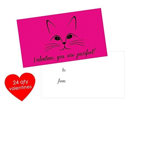 Amazon Com 24 Qty Cat Valentines Cards Kids Mini Valentines Day