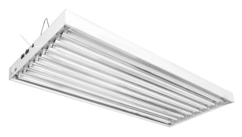 T5 Fluorescent Outdoor Lighting
