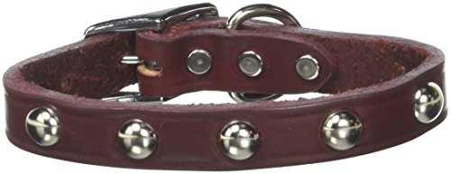 Mirage Pet Products 82-11 16BG Stud Leather Dog Collar, 16