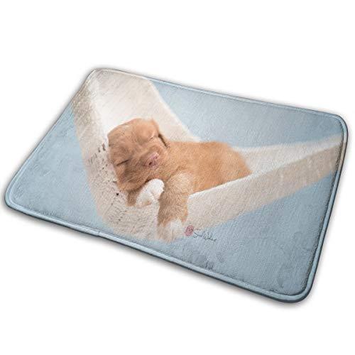 (MountGet Animals Dog Hammocks Puppies Sleeping Funny Text Doormat Floor Mat Rug Outdoor/Indoor/Bathroom/Front DoorMats Rubber Non)