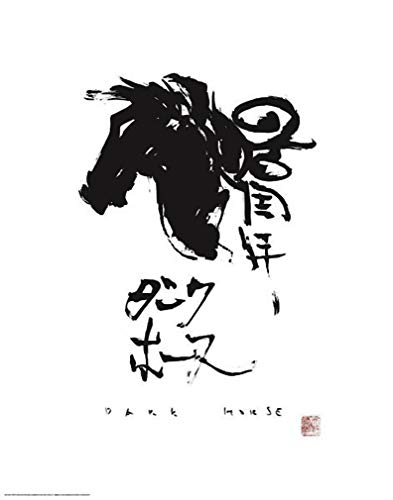 Yoshitaka Amano Limited Edition Lithograph (18 x 24)