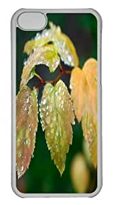 Dew On Bud Leaf PC Case Cover for iPhone 5C and iPhone 5C Transparent