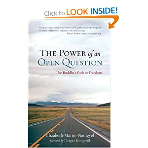 The Power of an Open Question: The Buddha's Path to Freedom Elizabeth Mattis-Namgyel and Dzigar Kongtrul