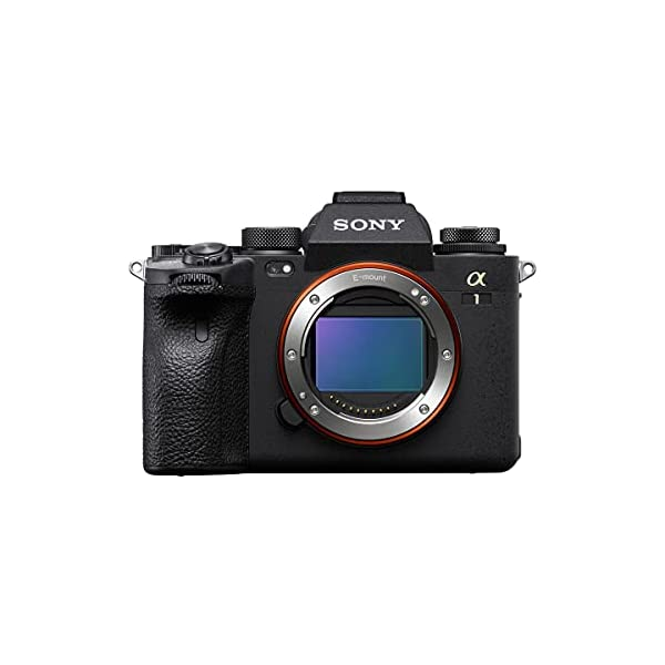 RetinaPix Sony Alpha ILCE-1 Mirrorless Full-Frame Camera (30 FPS, 50.1 MP, 8K 30P, 4K 120P, Real-time Eye AF, Real time Tracking) - Black