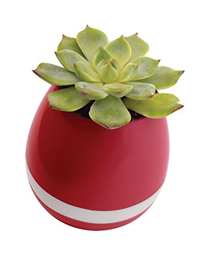 Smart Music Flower Pot Decor - Best Bluetooth Speaker with Wireless LED Color Changing Lights and Touch Sensor Connects to Smartphones and Tablets - Great Night Lights and Speaker Gifts For Kids