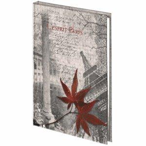 Exacompta Adressbuch Paris A5 140 Seiten