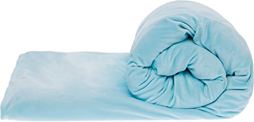 Cheap Mindful Design Adult and Kids Weighted Blanket with Removable Minky Duvet Cover - Sensory Blanket for Stress Relief Naps and Deeper Sleep (Teal 10 Lbs) Black Friday & Cyber Monday 2019