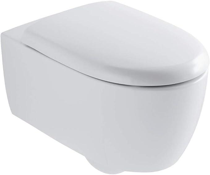 Pack WC suspendida con tapa con cierre ralentizada Lovely RimFree color blanco Ref 08399600000100: Amazon.es: Hogar