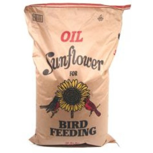 Shafer seed BCGEN50 Sunflower Seed 100% Oil - 50 lbs by Shafer Seed