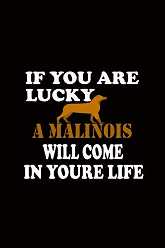 IF YOU ARE LUCKY A MALINOIS WILL COME IN YOURE LIFE: design 120 pagecomposition Blank Notebook college ruled joural for you or as a gift for your ... school or for you  to use at office or home.