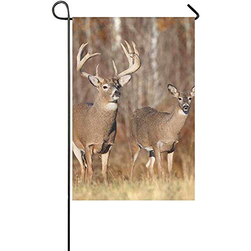 yyoungsell Home Decorative Outdoor Double Sided Animals Wildlife Deer Buck Desktop X Hd Wa Polyester Garden Flag Banner for Outdoor Home Garden Flower Pot Decor 12x18