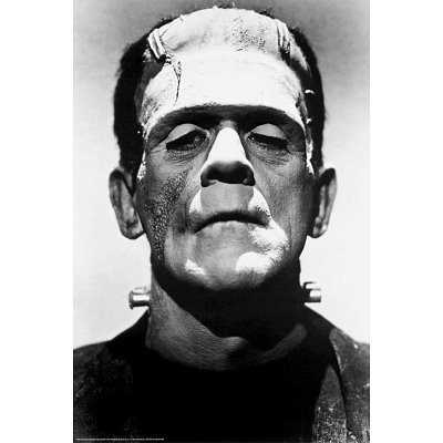 Frankenstein Movie  Poster Print 24 x 36in