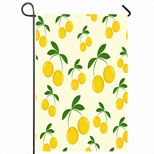 (Ahawoso Outdoor Garden Flag 12x18 Inches Fresh Berry Yellow Cherries Agriculture Food Cooking Drink Cherry Cute Diet Eating Home Decor Seasonal Double Sides House Yard Sign Banner)