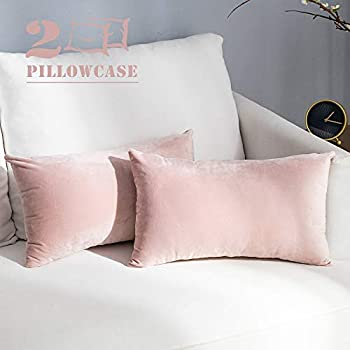 NANPIPER Set of 2 Velvet Soft Decorative Cushion Throw Pillow Covers 12x20 Inch/30x50 cm Cozy Solid Velvet Square Pillowcase Cushion Covers Pink for Couch and Bed