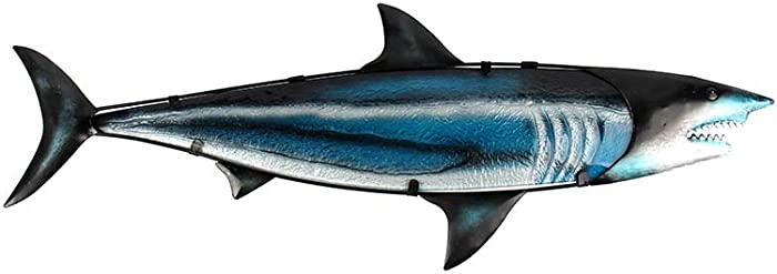 Top 7 Hammerhead Shark Collectible