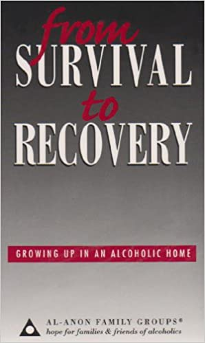 The Meeting Book 2: For the Families & Friends of Alcoholics