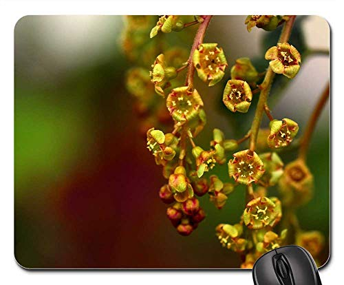 Mouse Pad - Currants Flowers Ribes Gooseberry Greenhouse Bush