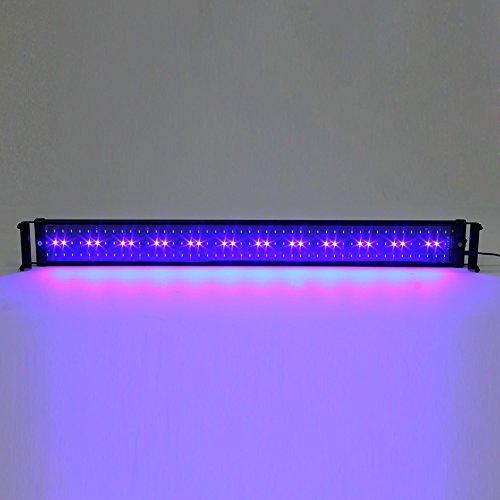 Amzdeal 12w Lámpara de acuario, luces para acuarios y estanques, 90-110cm 600 lumens, Color de luz blanco y azul, con enchufe EU