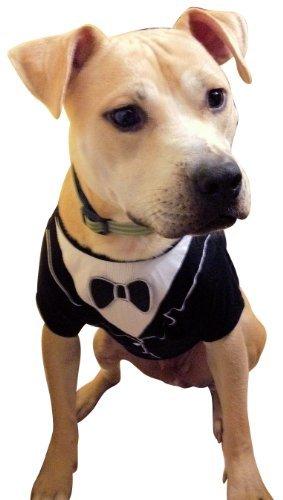 Frenchie Mini Couture Dog Tuxedo,