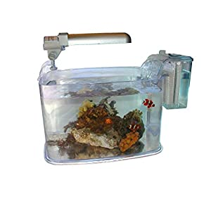 Koller Products Replacement Lamp 18-Watt for Tom Deco 3 Aquarium - TM1291 7